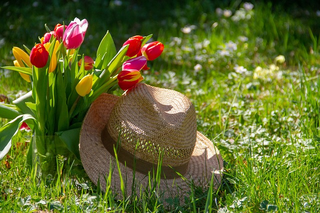 Maintaining Your Garden: A Guide For The Jetset Retiree